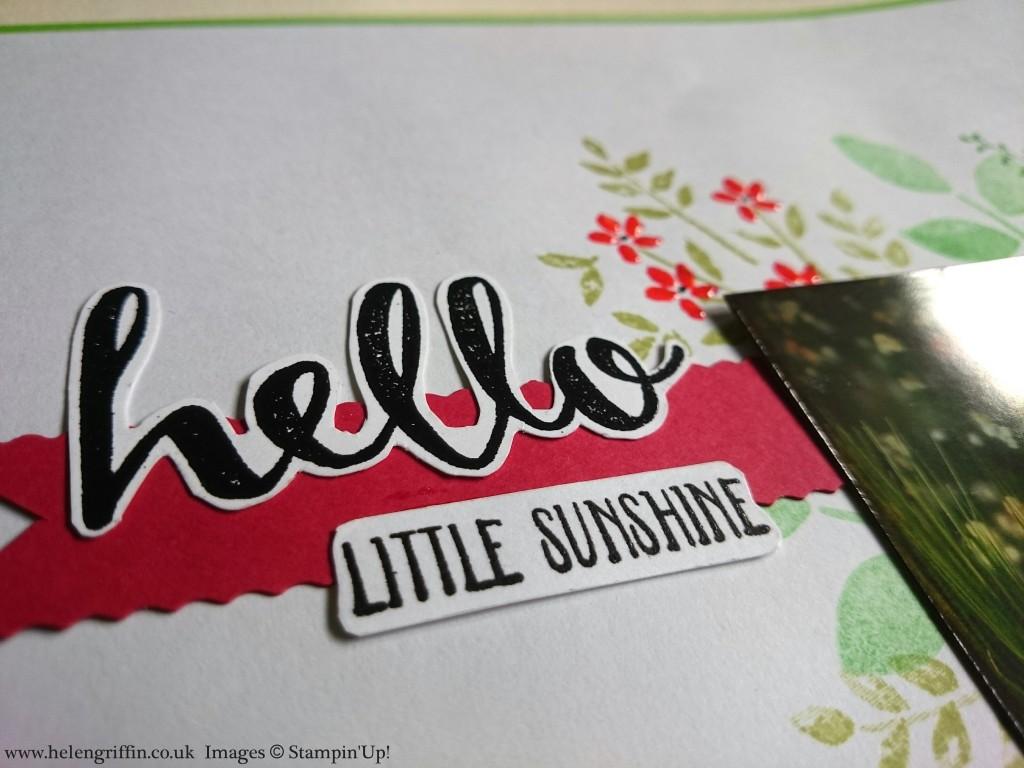 Hello Little Sunshine 4