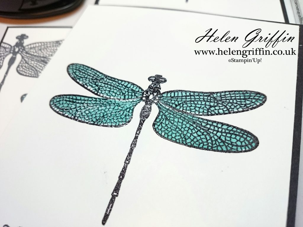 Helen Griffin UK Stampin'Up! Dragonfly Dreams Black and white card 4