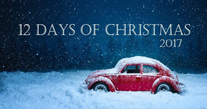 #12 says of christmas #christmas projects #christmas diy